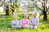 Kids with bunny ears on Easter egg hunt in blooming cherry blossom garden. Little boy and girl with spring flowers and eggs basket in fruit orchard. Children search for colorful eggs, candy and sweets