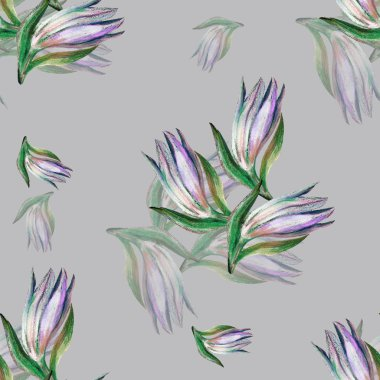 Bud lilies of color pencil. Seamless pattern on a gray background.