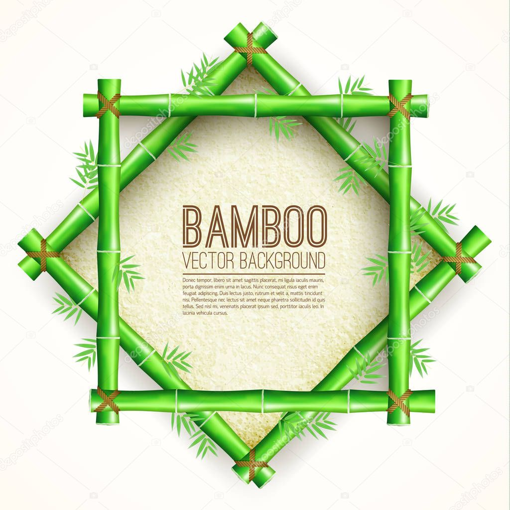 Bamboo  background concept. Vector illustration desing