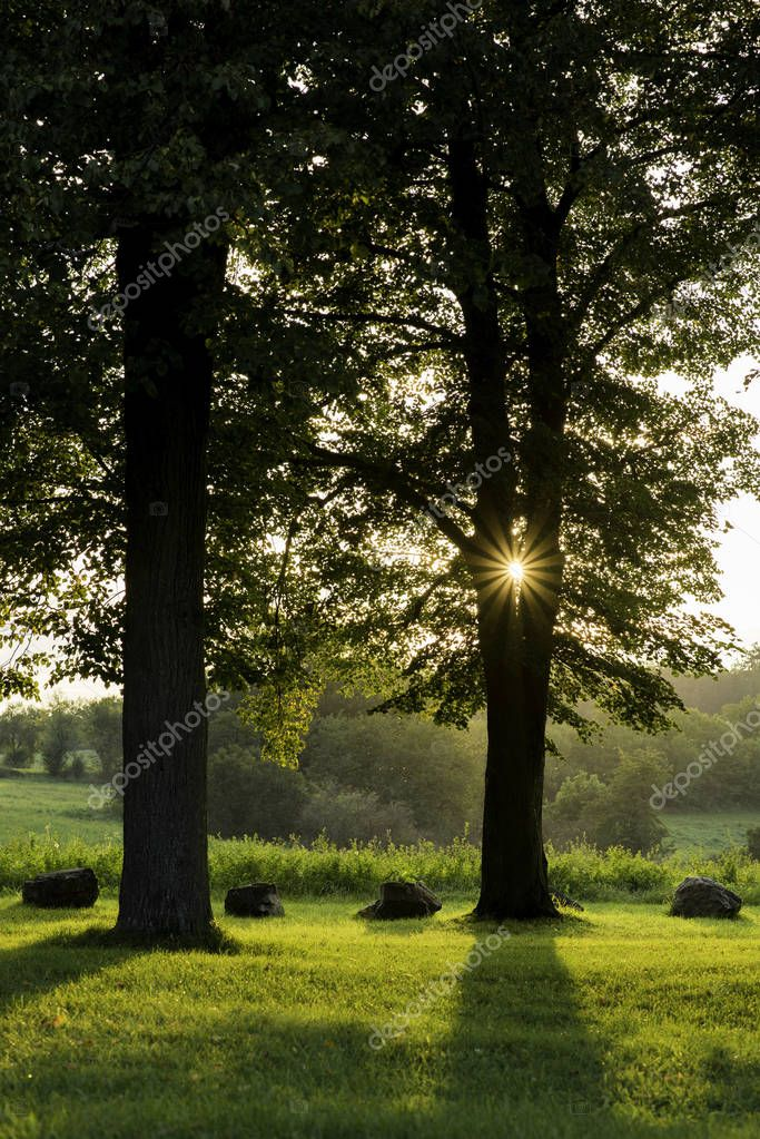 Low setting sun in green park casting long shadows. Chapel of Gods mother by the Veveri castle Brno Czech Republic.
