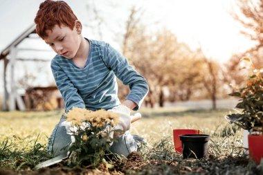 Serious schooler using small shovel while gardening