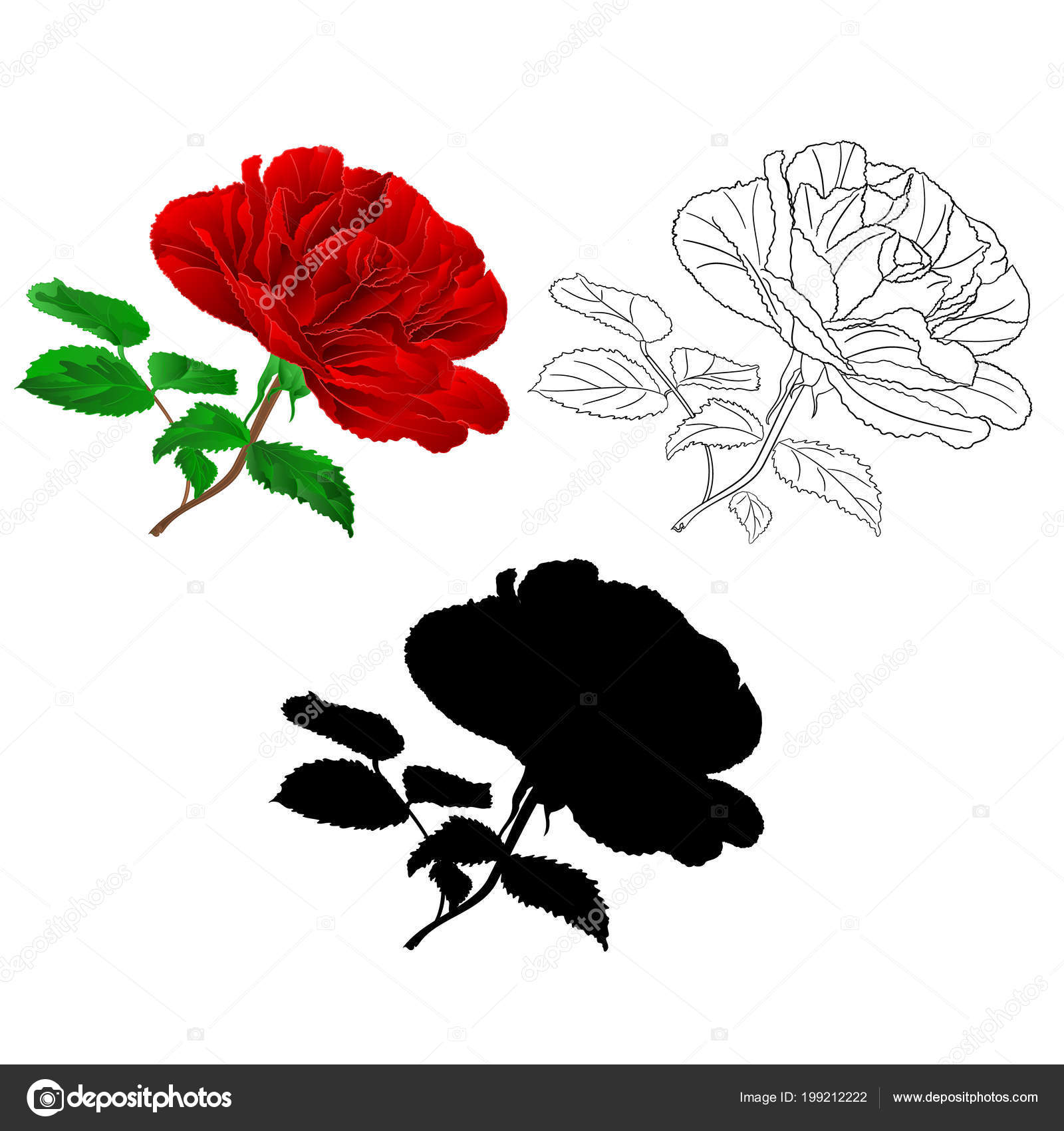 Drawings Simple Rose Outline Simple Red Rose Stem Leaves Natural Outline Silhouette Vintage White Stock Vector C Tina5 199212222