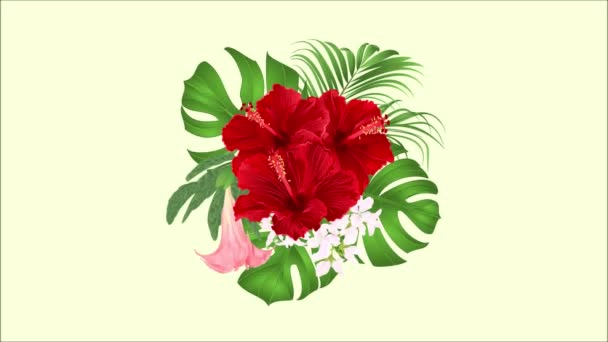 Video animation seamless loop bouquet with tropical flowers  floral arrangement,  red hibiscus, palm,philodendron and Brugmansia  motion