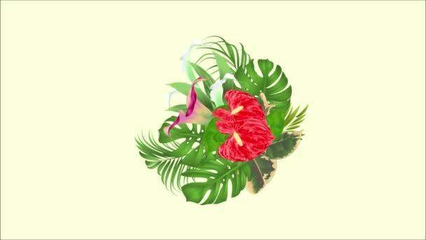Video Animación Transparente Lazo Bouquet Arreglo Floral Con Flores Tropicales Con Hermosos Lirios Cala Y Movimiento De Rosas Palma Philodendron Y Ficus