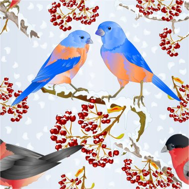 Seamless texture birds Bluebirds and bullfinch small songbirdons on on snowy tree and berry winter background vintage vector illustration editable hand draw