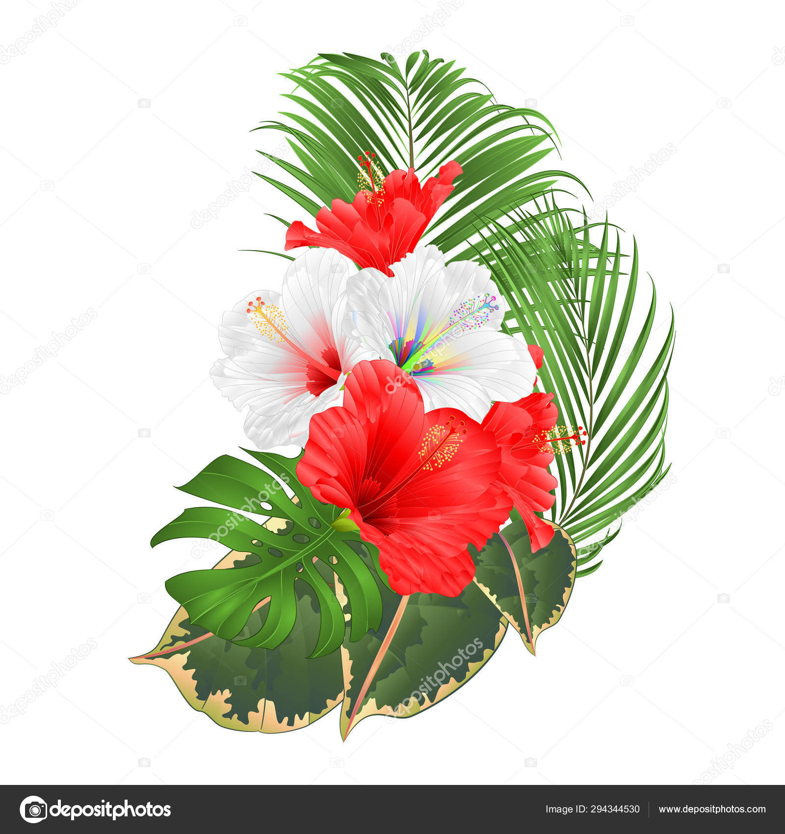 Bouquet Tropical Flowers Floral Arrangement Beautiful White Red Hibiscus Palm Vector Image By C Tina5 Vector Stock 294344530
