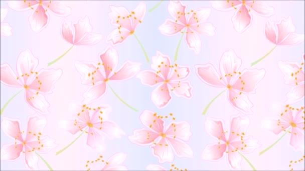 Video bezešvé smyčka animace ilustrace květiny sakura květy jarní pozadí vintage pohyb