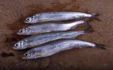 Smelt fish on cutting board