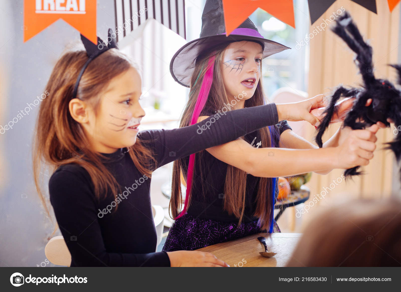 two girls wearing halloween costumes playing with black scary spider toy stock photo