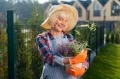 Nice v důchodu zúčastněné ženy těší teplý den