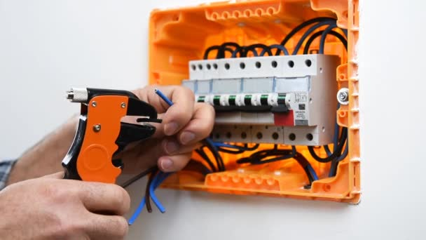 Video o rukou elektrikáře, který se zařízením pro odstraňování drátů připravuje elektrické kabely v elektrickém panelu domovní instalace. Stavebnictví.