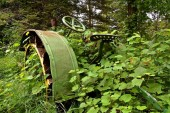 A very old green tractor is buried in the summer growth of vines, weeds, and shrubs.