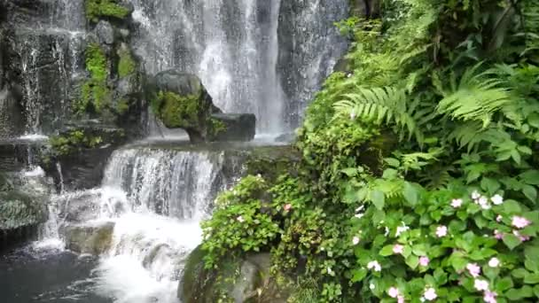 Scenic nature of beautiful waterfall green plant leaf and fresh water pond