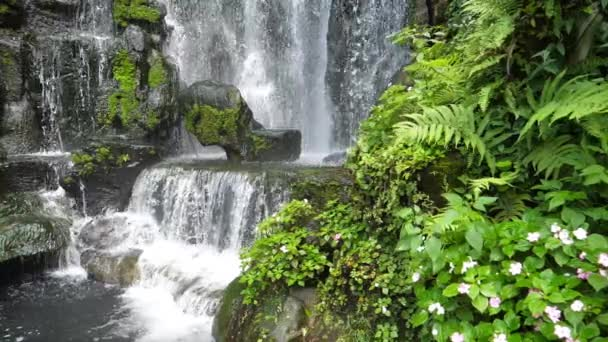 Scenic nature of beautiful waterfall green plant leaf and fresh water pond in slow motion