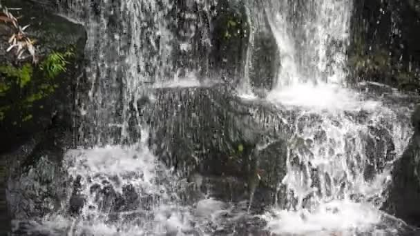 Scenic nature of beautiful waterfall in super slow motion green plant leaf