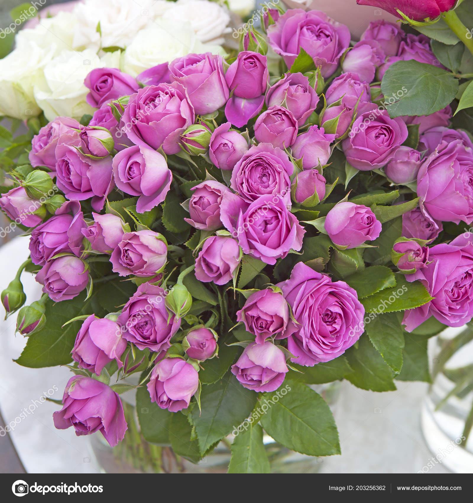 Bouquet De Roses Roses Dans Un Vase Pour Un Anniversaire