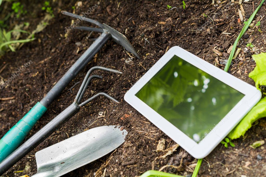 Garden Work With White Business Tablet And Gardening Tools