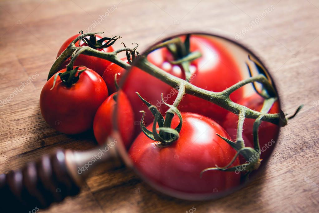 Looking Through A Magnifying Glass On A Stalk Of Tomatoes On A Brown Table
