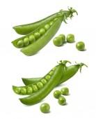 grüne Erbsenschoten isoliert auf weißem Hintergrund. Paketdesign-Element mit Clipping-Pfad