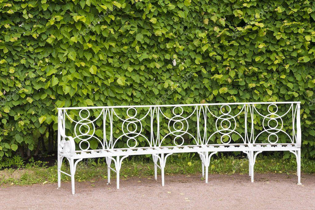 Catherine Park in Tsarskoye Selo with white benches on a summer Sunny day.