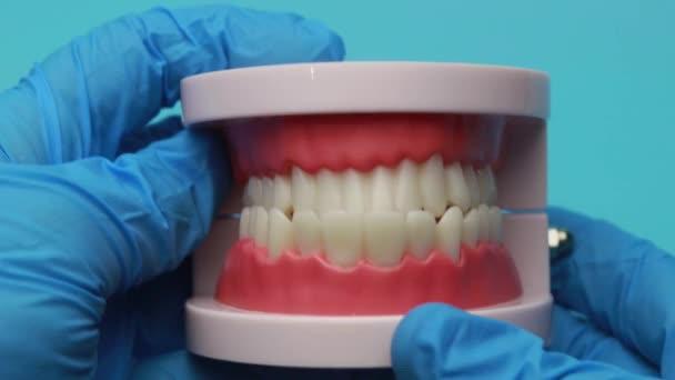 zubař, který otírá zubní protézy. Zubní protéza, simulace.