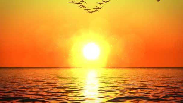 Hejna Hus letících nad oceánem směrem k západu slunce