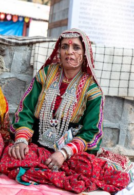 Portrait of beautiful Indian woman with traditional indian clothes and jewellery participating in Surajkund Craft Fair, Faridabad, Haryana, India, February 2020