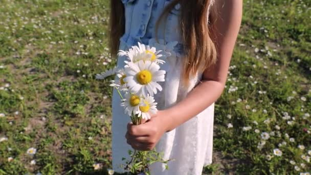 The girl collects flowers on a meadow. little beautiful girl collects wildflowers