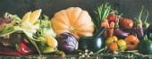 Podzim vegetariánských potravin. Sortiment různých podzimní zeleniny pro zdravé vaření nad rustikální skříň, tmavá stěna pozadí, kopírování prostor, široké složení. Místní trh ekologickou výrobu