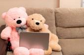 Konzept der Freundschaft Liebe Komplizenschaft Online-Shopping und Freizeit vertreten mit ein paar Teddybären im Internet surfen mit einem Laptop auf einem Sofa sitzen