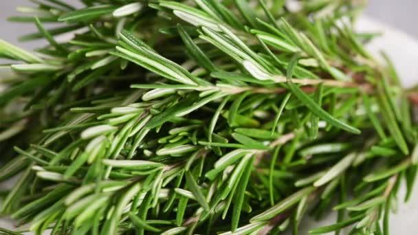Friss rozmaring gyógynövények Vértes view felvételeket