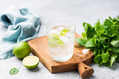 Ice cold sparkling cocktail with lime