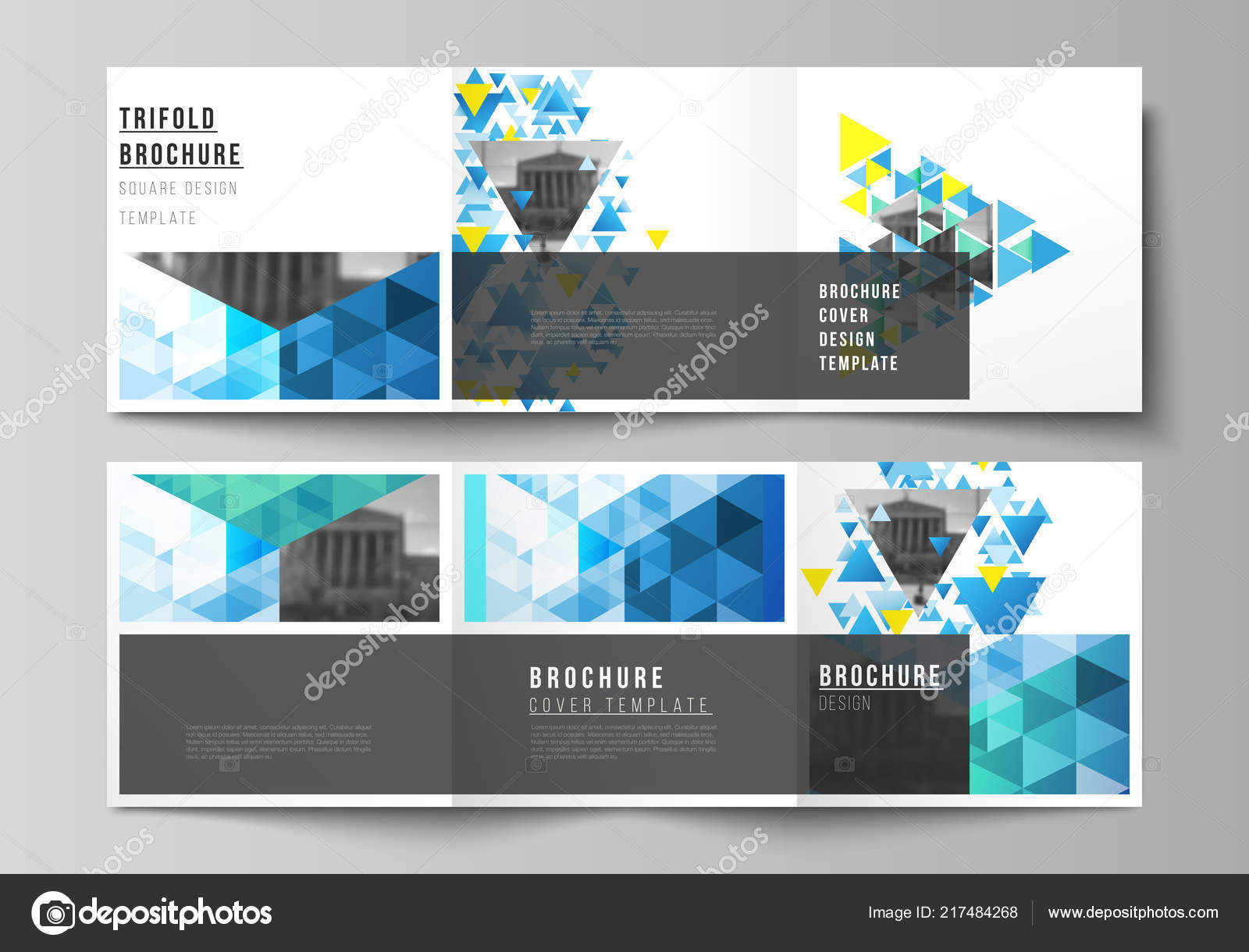the minimal vector editable layout of square format covers design templates for trifold brochure flyer