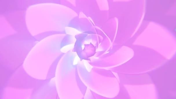Rózsaszín virág háttér