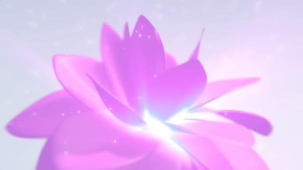 Růžové květinové pozadí