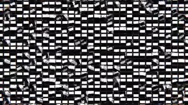 Černobílá vizuální
