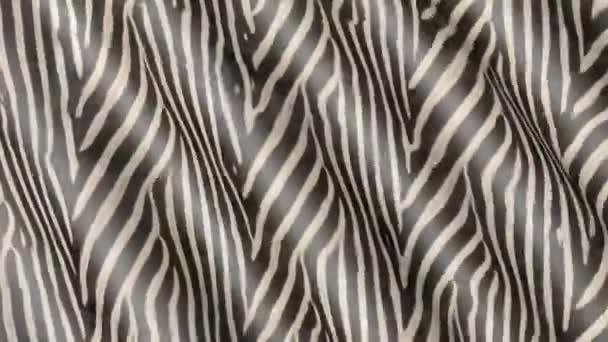 Vlny Zebra barevné látky. Abstraktní 3d textury hnutí.