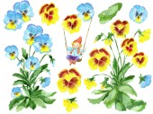 Photo Design set with garden pansy flowers, leaves and funny gnome on swings isolated on white. Watercolor cartoon doodle illustration, botanical and fantasy drawings for print, greeting cards, poster, invitations