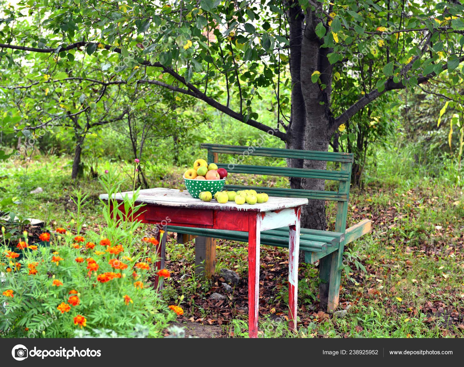Ancienne Table Banc Avec Bol Pommes Dans Ancien Jardin Été ...