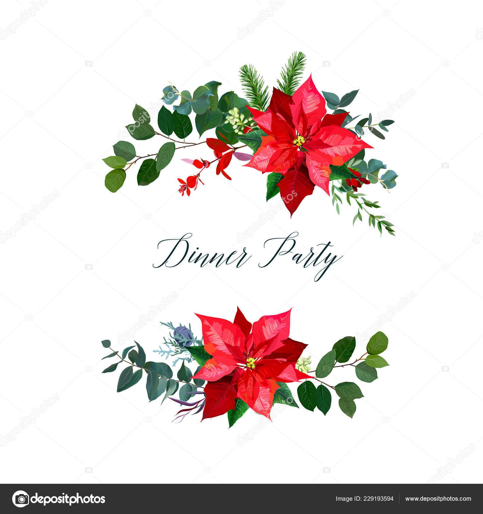 Christmas Greenery Vector.Red Poinsettia Flowers Christmas Greenery Emerald