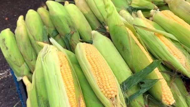 Roztrhané uši z přírodní kukuřice leží v dřevěné krabici na pultu.