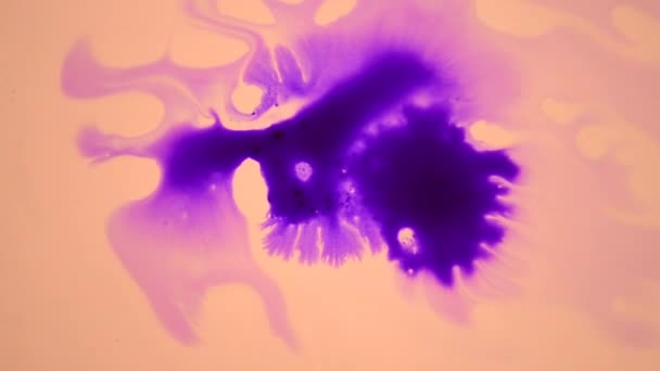 Gyönyörű lila tinta csepp fehér nedves sima felületre terjed.