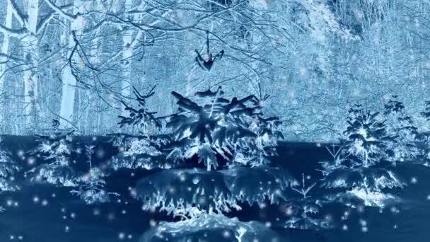 Lesní stromy na sněhu v noci v zimě.
