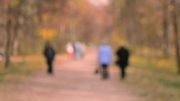 Many people walk in the park. Families walk in day in the autumn park in the city. People walk along a path or dirt road between the forest trees. Blurred Background. Beautiful natural autumn backdrop