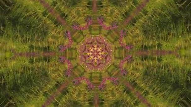 Pohyb na pozadí abstraktní animovaný kaleidoskop.