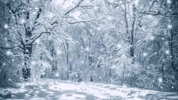 Hóval borított fák növények erdő téli szűrő, hatás.