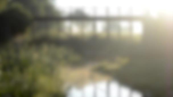 Rozmazané pozadí. Krásný most a malý rybníček na břehu roste