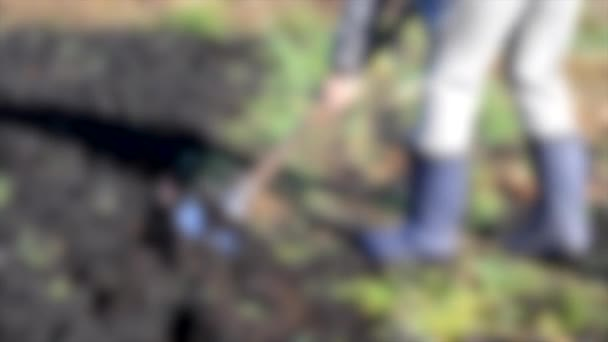 Blurred background. Man with a shovel digs his garden sunny day