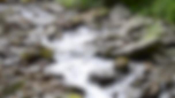 Homályos háttér. Hegyi patak az erdőben nagy kövekkel