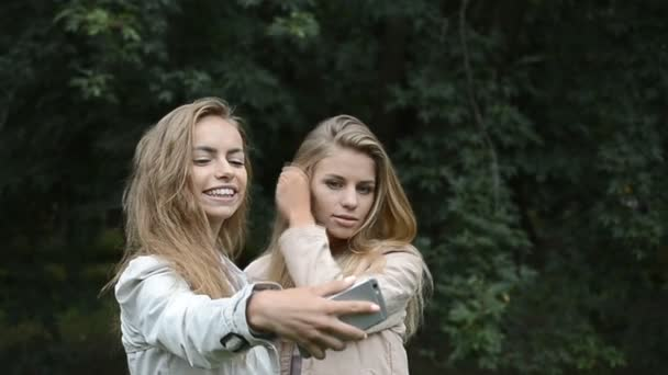 Dva nejlepší přátelé krásná mladá dívka nebo žena pořizování selfie